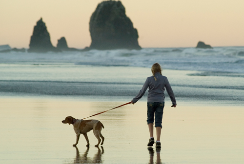 a woman and her dog on the beach